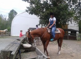 ファームステイ乗馬